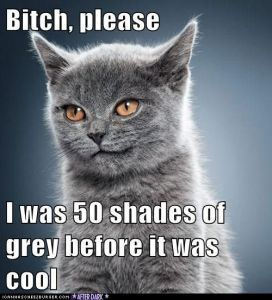 50-shades-of-grey-pictures-11